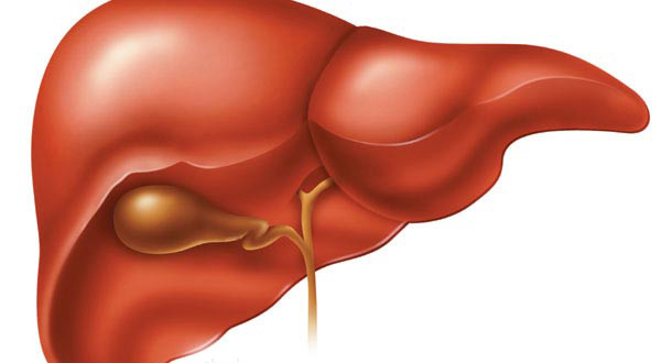 main-causes-of-liver-damage
